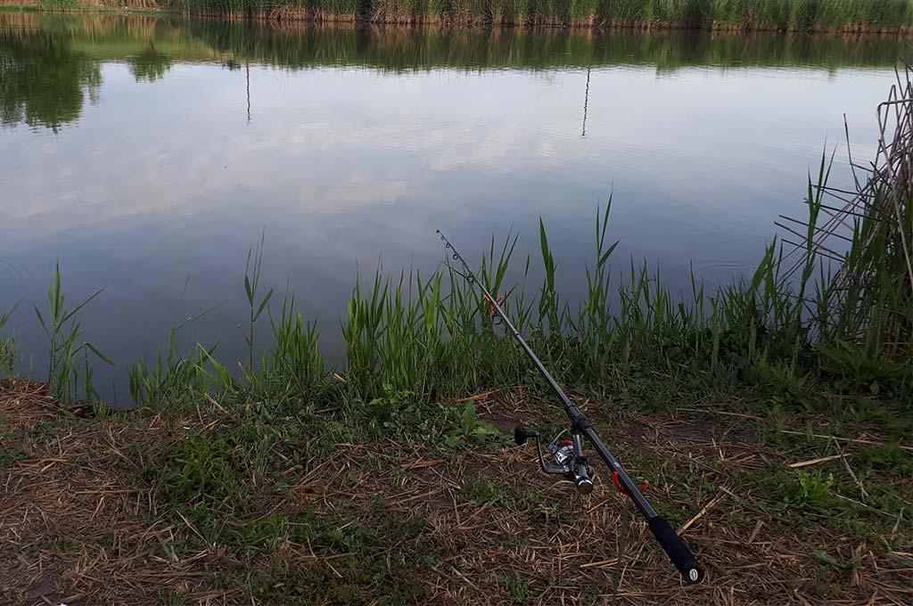 Blancul-lansetei-pentru-pescuit-la-crap